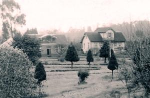 Residencias frente a la plaza de Purranque